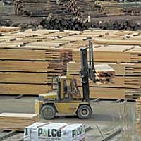 Jobs lifting lumber may have dwindled, but there's still some work in the industry. Photo by Kyana Taillon.