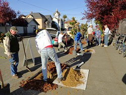 PHOTO BY BARRY EVANS - Keep Eureka Beautiful volunteers plant magnolias on Trinity Street in Eureka.