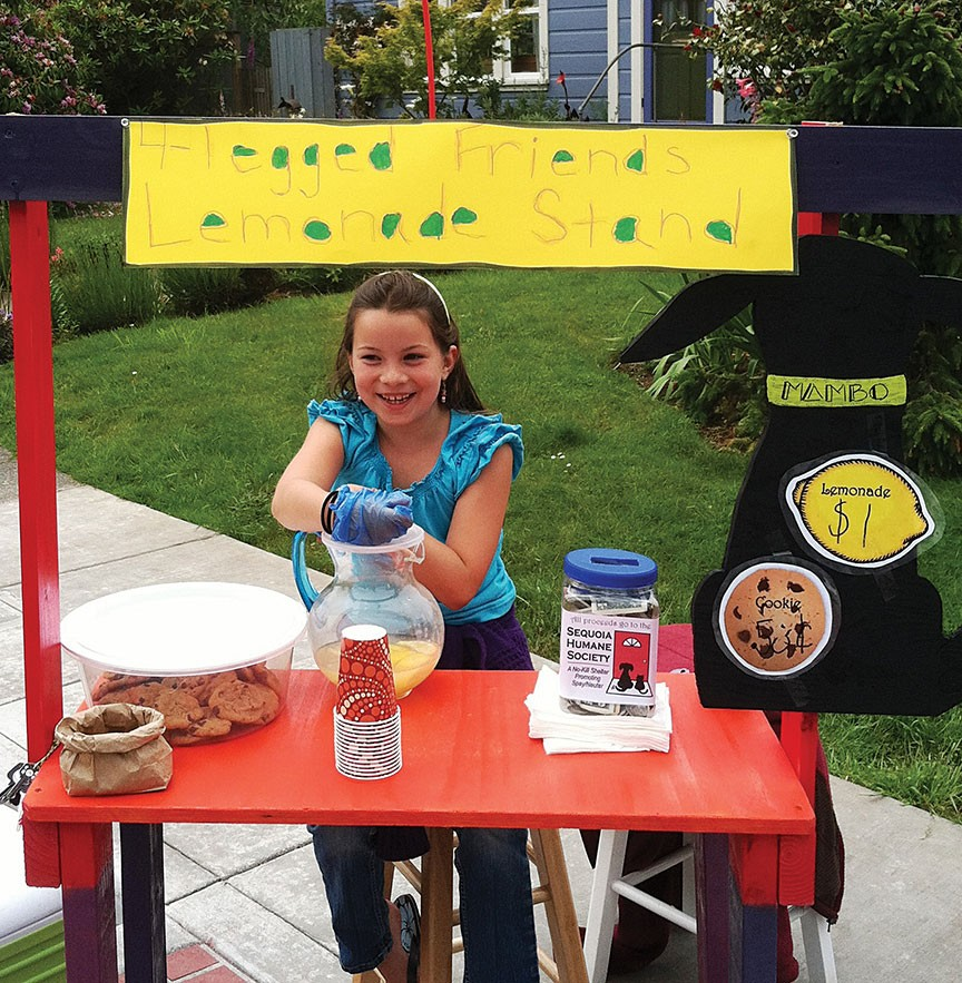 Kids are encouraged to support a favorite cause with some of their lemonade revenues. - PHOTO COURTESY OF LEMONADE DAY