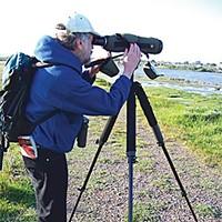 Birders of America Local birder and author David Fix. Photo by Heidi Walters