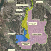 McKay Tract Community Forest: Five Thumbs Up