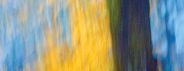arts_mckinleyville-magnum.jpg