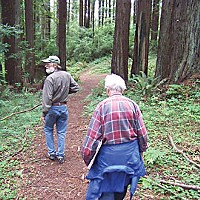 Save the Trees! Neil Palmer and Marian Perry on a walk through the Rohner Park Forest. Photo by Heidi Walters.