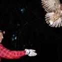 NPR Barred Owls vs. Spotted Owls