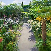 A Summer Garden
