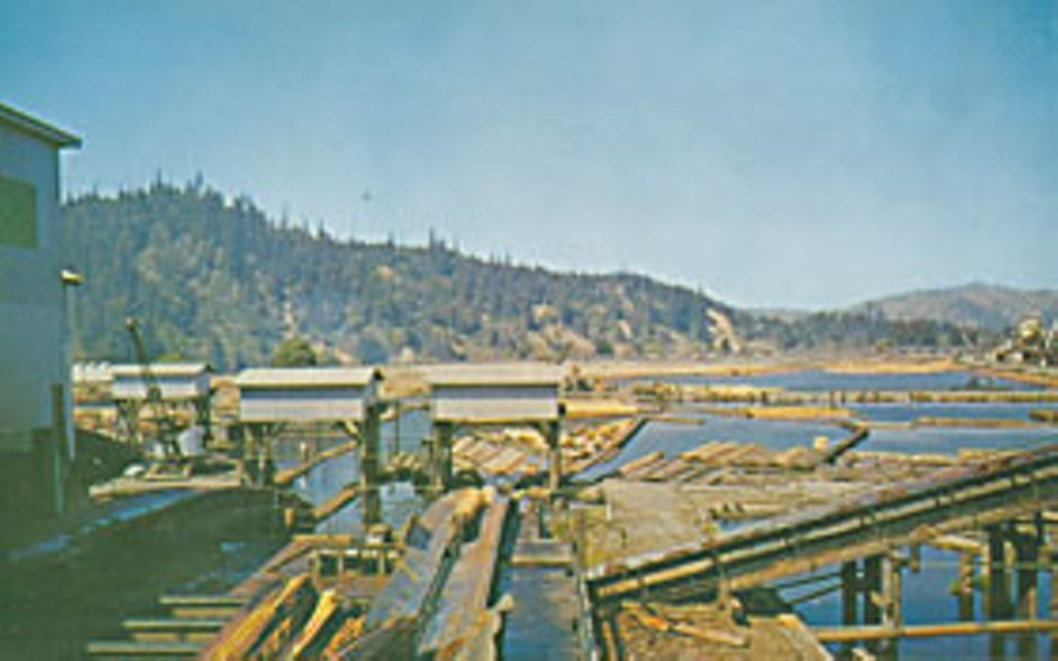Pacific Lumber Company Log Pond, ca. 1960. Photo courtesy sunnyfortuna.com.