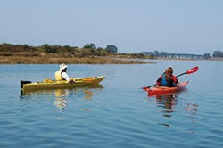Paddling on Humboldt Bay. - PHOTO COURTESY OF CENTERACTIVITIES/HSU AQUATIC CENTER