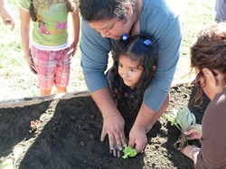 PHOTO COURTESY OF THE NCCGC - Parents teach gardening at The Family Garden in Loleta