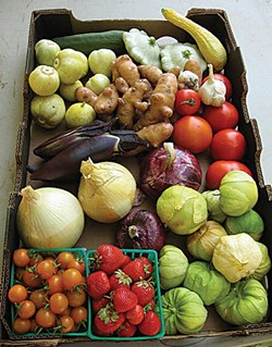 PHOTO BY FREDERIC DIEKMEYER - Produce from Luna Farms.