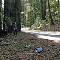 Roads and Redwoods Rear-view mirrors, RV steps, and broken reflectors litter the area between mile post markers 1.35 and 1.40, the main project area inside the park. In this section, the roadway will essentially be moved over 17 feet. Photo by David Bergin.