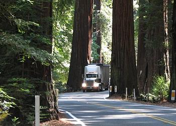Not Exactly Curtains for Richardson Grove Widening