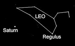 Simplified sky chart for late January at Humboldt's latitude, looking southwest. Saturn lies about halfway up the sky, below the constellation Leo (the Lion). Leo's brightest star Regulus is one of the brightest in the sky.
