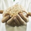 Brain Transplant