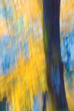 Stop squinting. The intentional blurring of Rick Gustafson's landscape photography, produced by playing with shutter speeds, gives his images brushstroke-like texture.