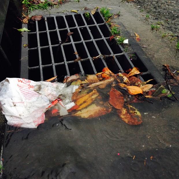Storm drain badness - PHOTO BY HEIDI WALTERS