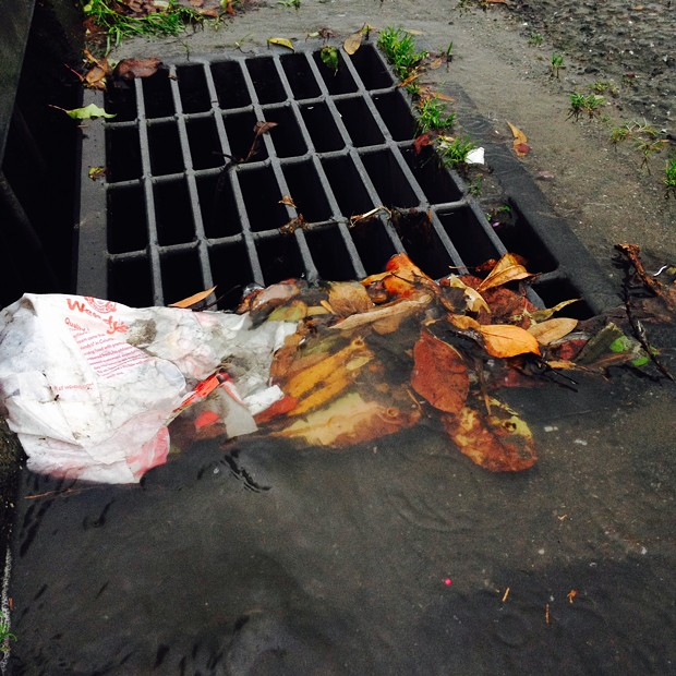 Storm drain badness - PHOTO BY HEIDI WALTERS