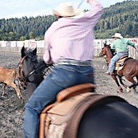 Last Cowboy Standing — A tale of rodeo culture in Humboldt County Team ropers gallop out of the box in hot pursuit of a calf at Orick. Photo by Yulia Weeks
