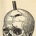 The 10 Percent Brain Myth