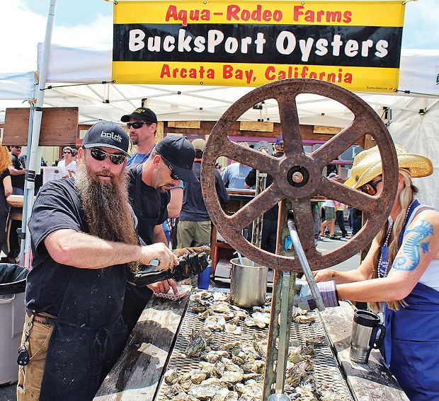 The epically bearded Steve Bohner of Alchemy Inc. grills and shucks bivalves from Aqua-Rodeo Farms at Arcata Main Street's 24th annual Oyster Festival, Saturday, June 14, on the plaza. - PHOTO BY BOB DORAN