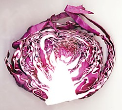 The humble cabbage. Photo by Bob Doran