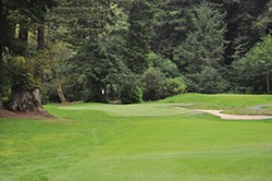 The view at the 17th hole at Baywood Golf and Country Club. - PAMELA LONG