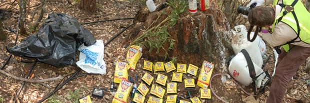 Toxic rodenticide, insecticide and other chemicals were found during a pot bust on Monday. - PROVIDED BY THE HUMBOLDT COUNTY SHERIFF'S OFFICE