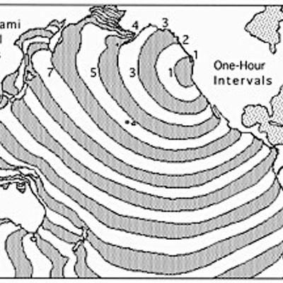 Tsunami Terrors