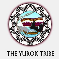 New Yorker Looks at Yurok Tribe's Carbon-Offset Project