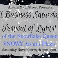 Small Business Saturday and Festival of Lights