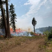 Smoky Skies from Red Salmon, Other Fires