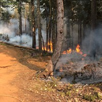 Red Salmon Complex Fire Update