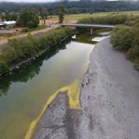 Public Health Warns of Toxic Blue-Green Algae in Local Rivers