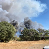 Knob Fire 100 Percent Contained as Hopkins Fire Takes a Toll in Mendocino (with Video)