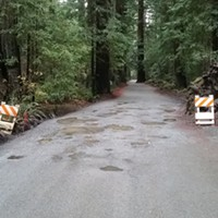 A SoHum State Park Road Set to Close for Weeks in Summer