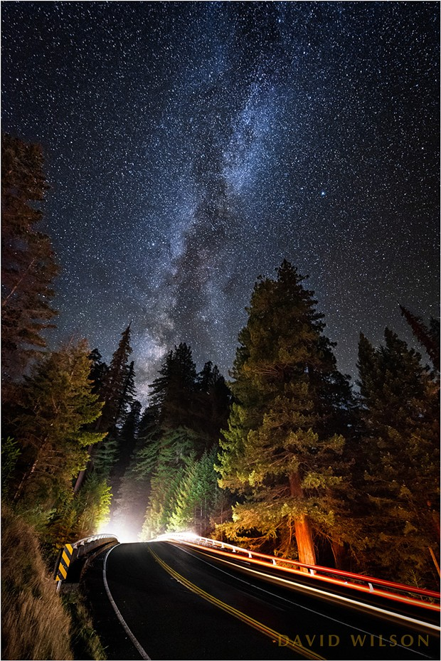 When the Milky Way lines up with the Avenue of the Giants. - DAVID WILSON