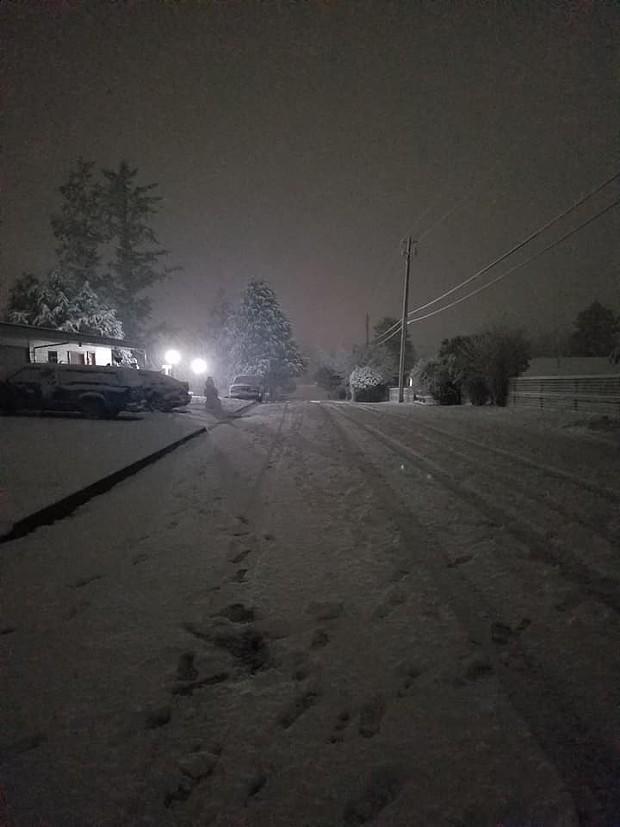 Snow falls in McKinleyville. - KALI COZYRIS