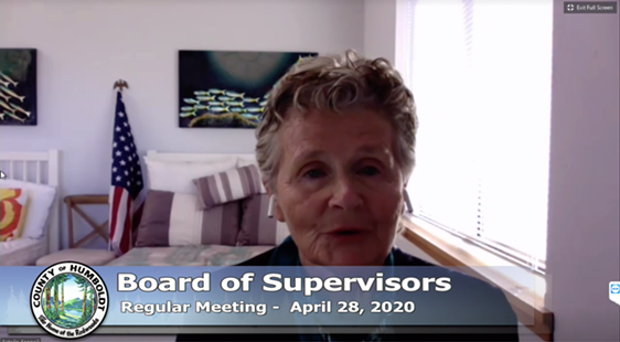 Second District Supervisor and board Chair Estelle Fennell - ACCESS HUMBOLDT SCREEN SHOT