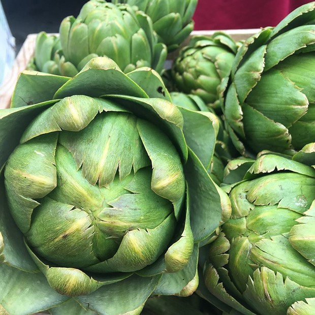 Artichokes from Earthly Edibles Farm
