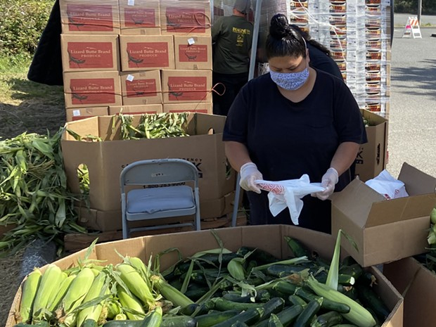 Food for People team member Veronica Brooks packing produce in preparation for a free produce distribution. - SUBMITTED