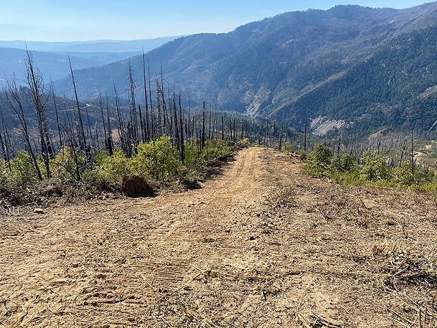 A fire line on the August Complex. - U.S. FOREST SERVICE