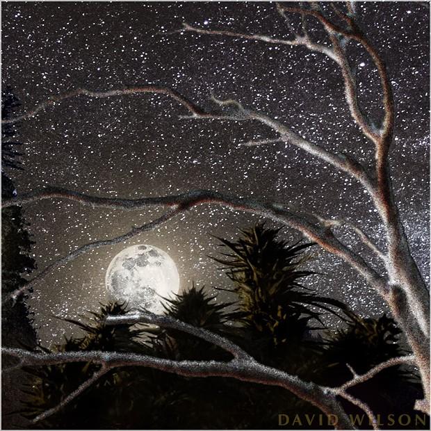 Snow moon detail. - PHOTO BY DAVID WILSON