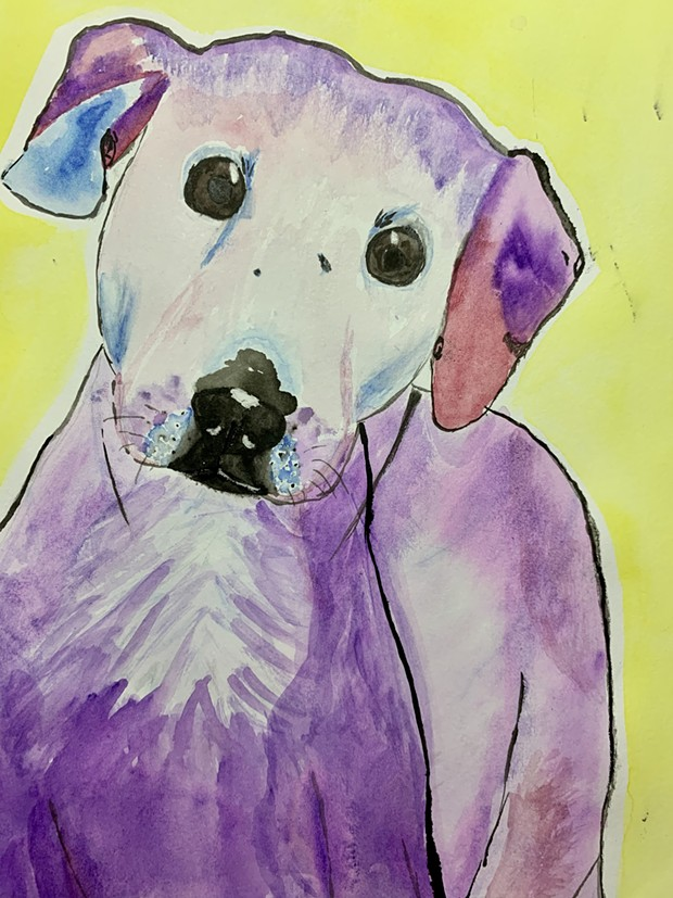 Tatum Fisher's watercolor painting of Myer, a Sequoia Human Society adoptable dog. - SUBMITTED