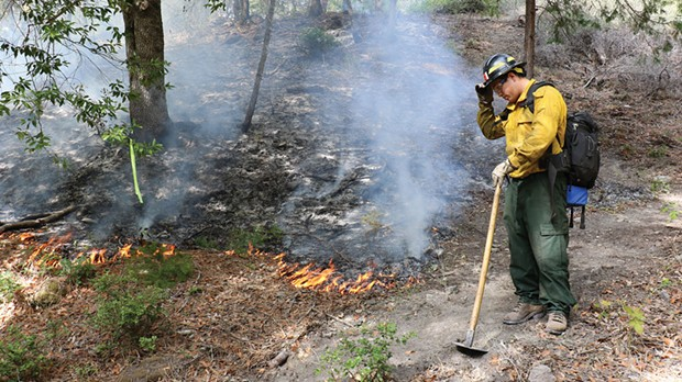 Rony Reed, a local Karuk tribal member who grew up dipnet fishing with his father just across the confluence at Ishi Pishi Falls, patrols the progress of a prescribed fire as part of the TREX burn training. He said it helped restore the fire management practices used a century ago by local Indians, until such burning was forcibly outlawed. - PHOTO BY STORMY STAATS/KLAMATH SALMON MEDIA COLLABORATIVE