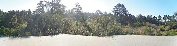 Lanphere Dunes. - FILE