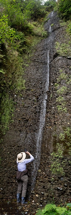 A tall waterfall coming off the bluffs at Gold Beach along the Coastal Trail north of Fern Canyon. - PHOTO BY MARK LARSON