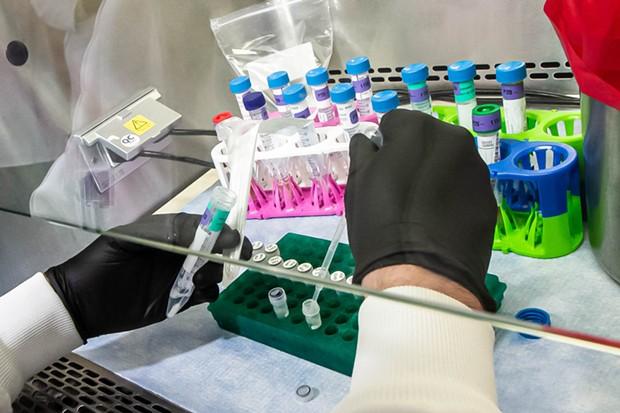 A Humboldt County Public Health Laboratory employee processes a COVID-19 test. - PUBLIC HEALTH