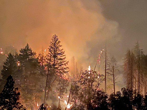 The glow of the Monument Fire through the trees at night. - PHOTO BY CHRIS AYER, CORONA FIRE DEPARTMENT