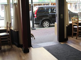 Raccoon disappears out the door. - LINDA STANSBERRY