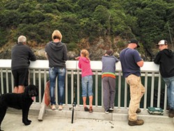 Dropping a line off the Trinidad Pier. - LYNN LEISHMAN