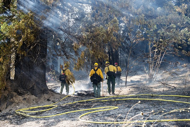 Crews from Cal Fire fight a blaze just north of Stafford on Thursday. - MARK MCKENNA